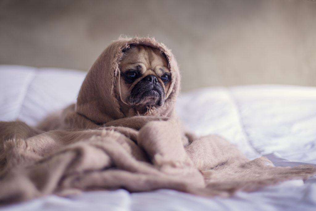 Kaalu langetamine ja uni on seotud – 14 nippi paremaks uneks.